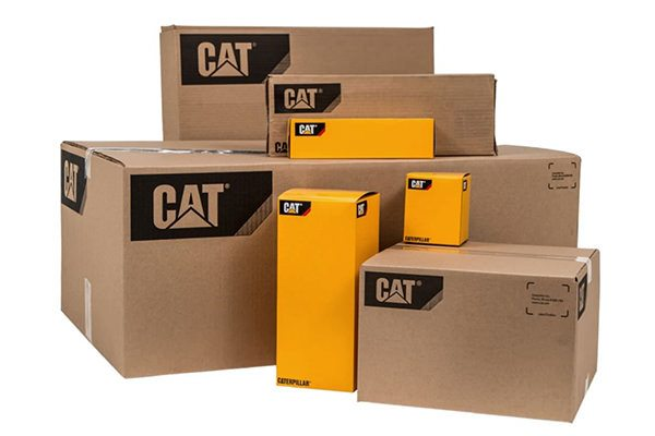 Cat Carboard boxes