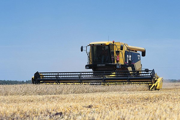 Cat Combine driving in field of wheat