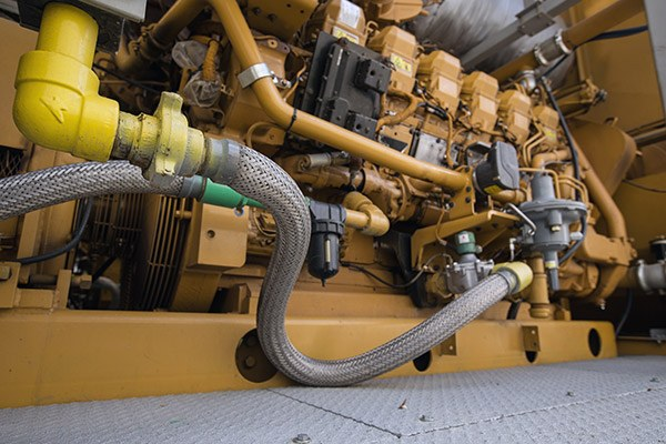 used cat generator